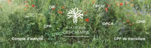DIF OPCO CPF Fongecif - A la Croisée Des Chemins